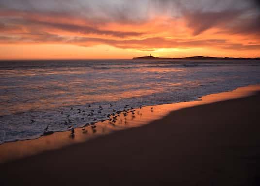 Half Moon Bay, California, United States of America