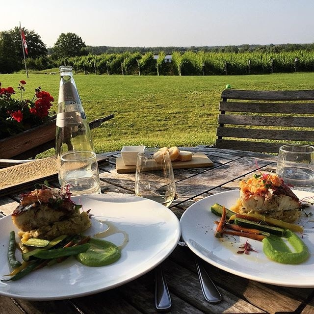 Ravine Vineyard Estate Winery, Niagara-on-the-Lake, Ontario, Canada