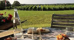 溝壑葡萄園莊園酒莊