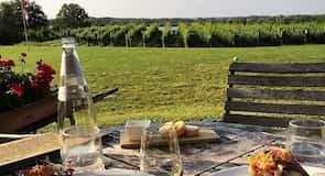 Виноробне господарство «Ravine Vineyard Estate»