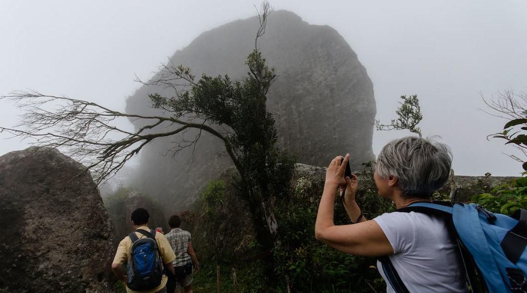Foto di Online Tours Cuba