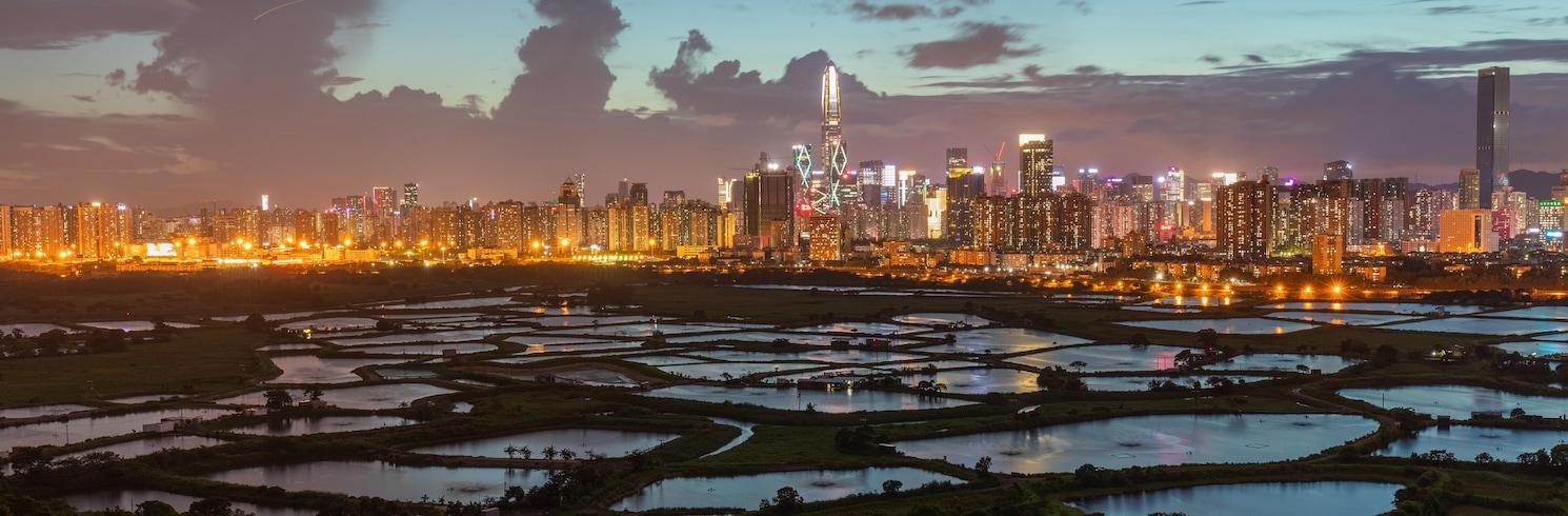 Tse Koo Hong, Osobitná administratívna oblasť Hongkong