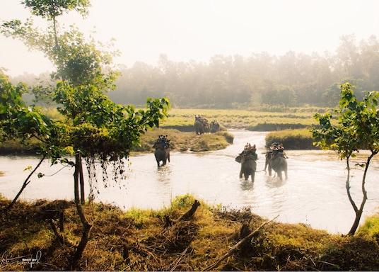 سوراها, نيبال