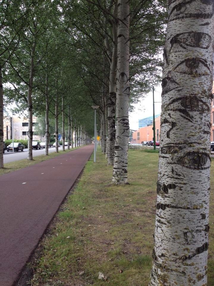 Stadionbuurt, Amsterdam, North Holland, Netherlands