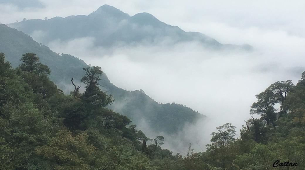 Photo by Poh Huay Suen