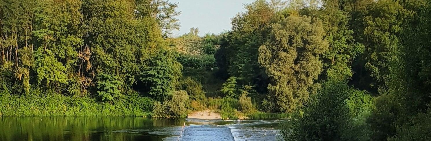 Neuenburg am Rhein, Alemanha