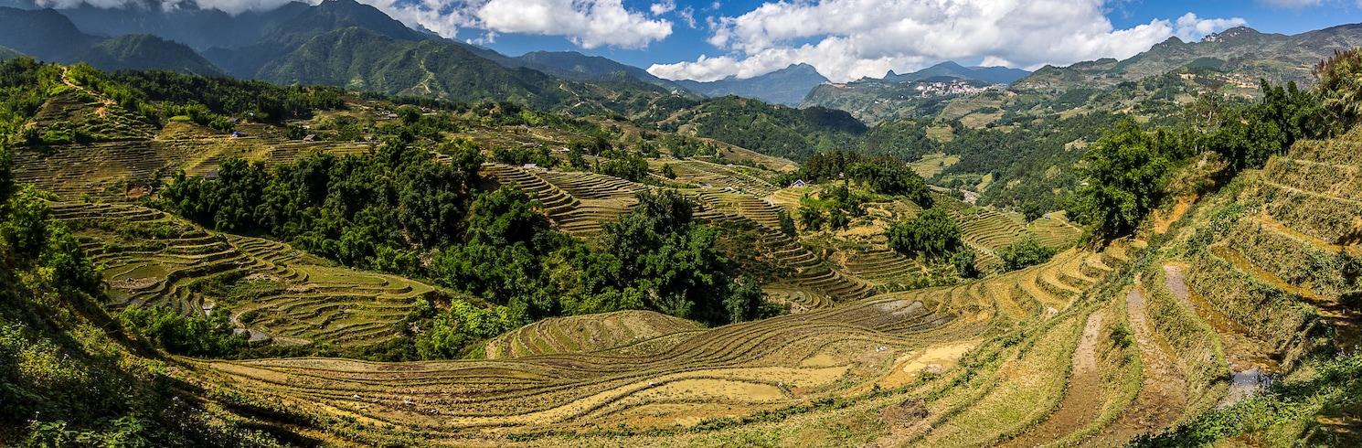 萊州省, 越南