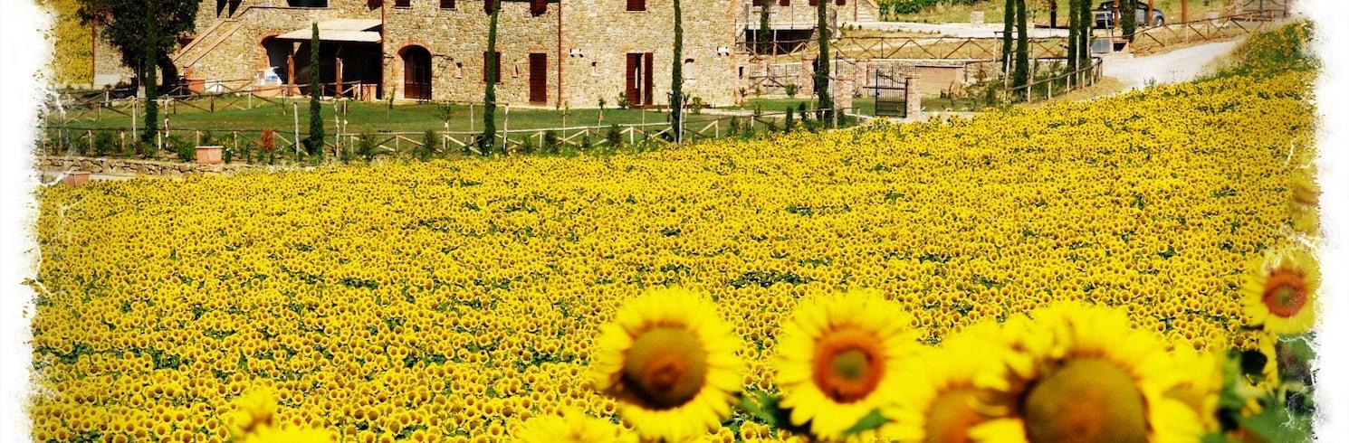 Пачиано, Италия