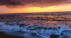 Nuevo Vallarta-stranden