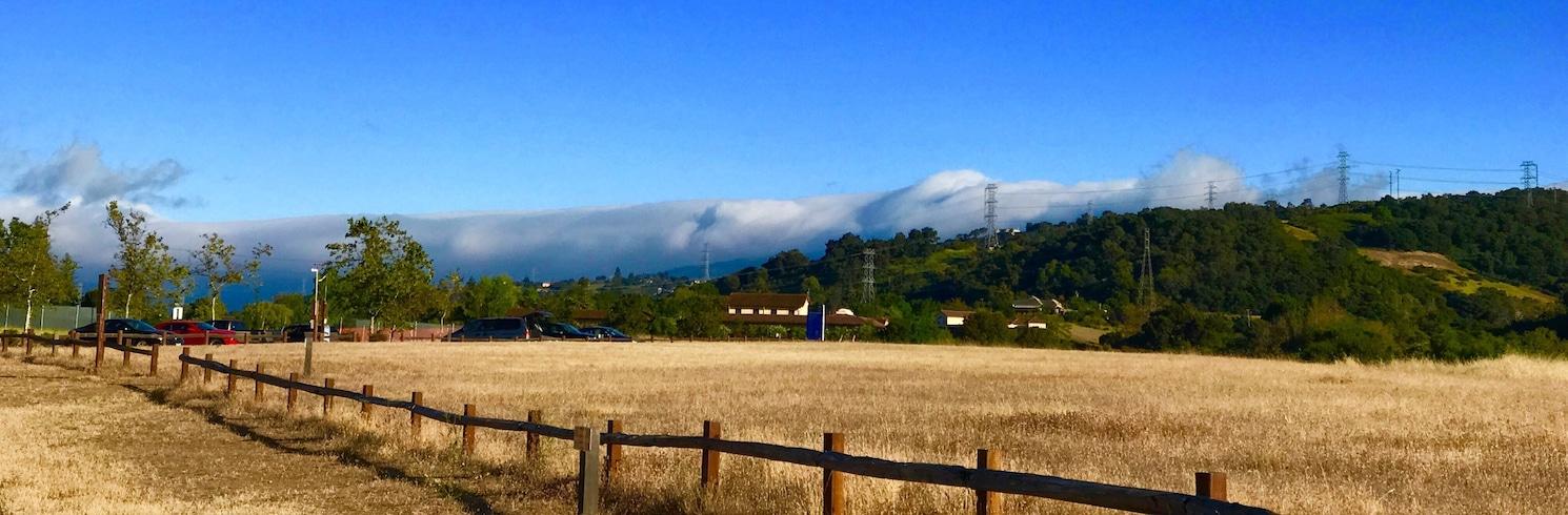 庫貝爾提諾, 加利福尼亞, 美國