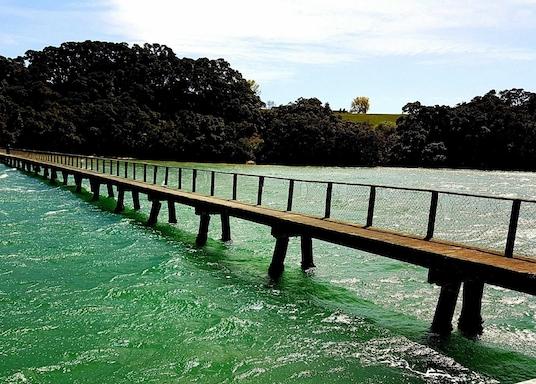 Katikati, New Zealand