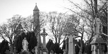 Glasnevin, Dublin, Irland
