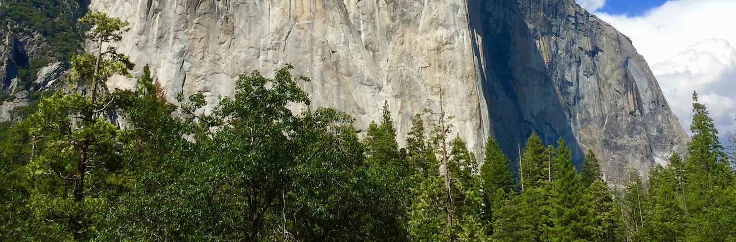 Yosemite National Park, California, United States of America