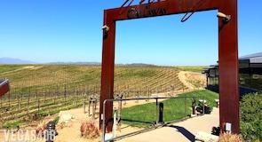 Callaway Vineyard and Winery (viñedos y bodega)