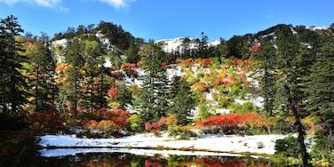 Takimi-numa , Hokkaido , Japan  Autumn has come , Winter also has come.  Takimi-numa is on the