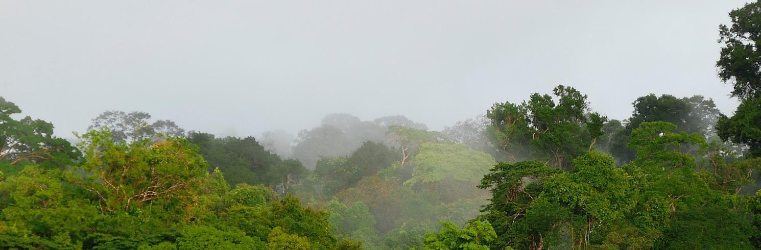 Sipaliwini District, Suriname