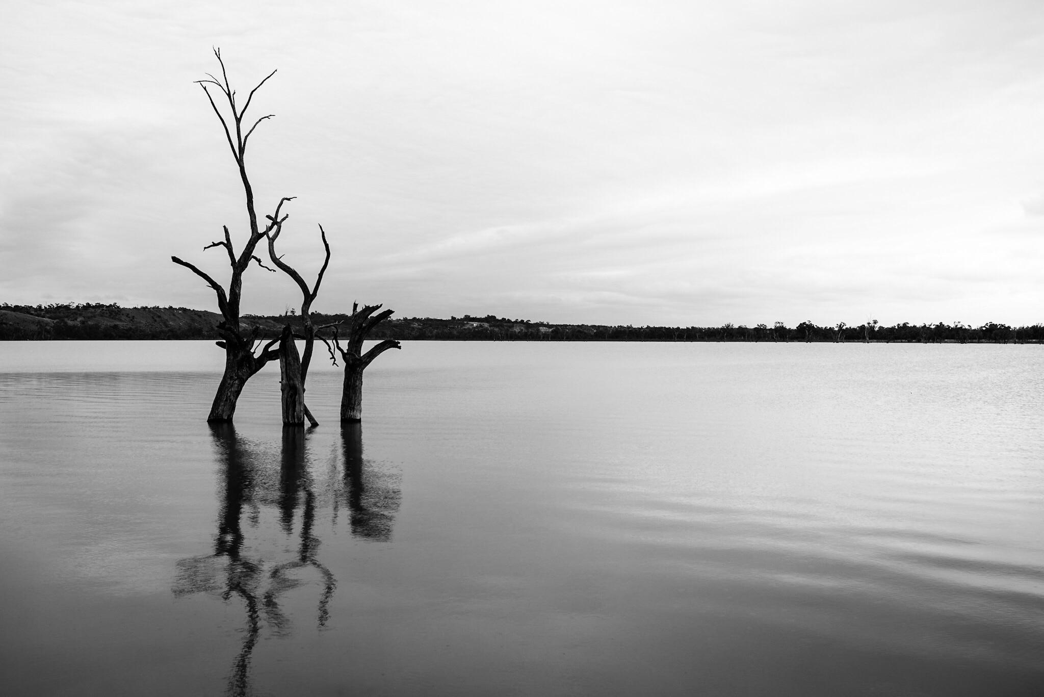 The District Council of Loxton Waikerie, South Australia, Australia