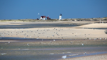 Provincetown/