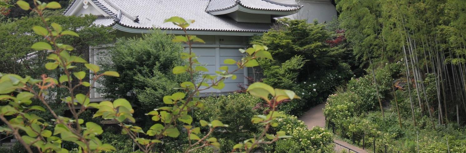 Kashiwa, Giappone