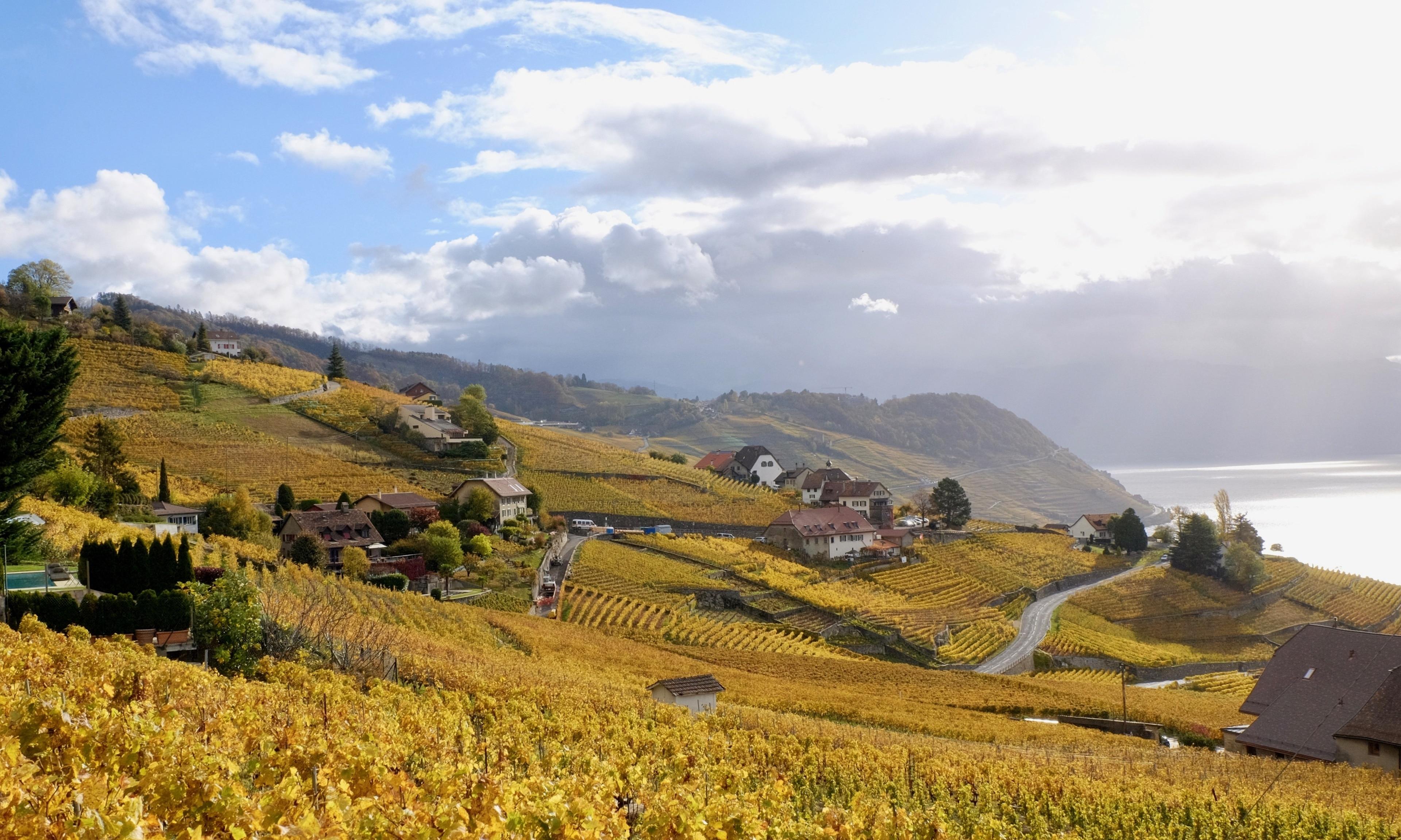 Lavaux-Oron District, Canton of Vaud, Switzerland