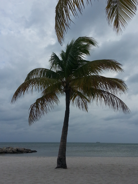 Midtown, Key West, Florida, United States of America