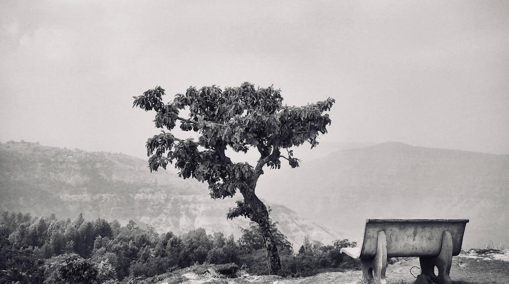 Photo by Lokesh Kansal