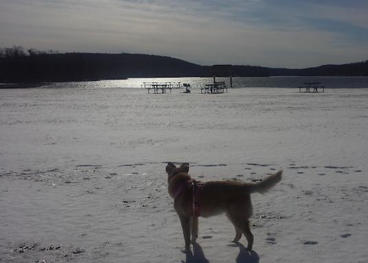 Highland Lakes, New Jersey, Verenigde Staten