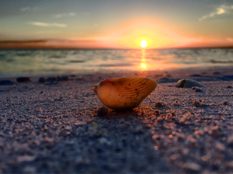 Placida, Florida, United States of America