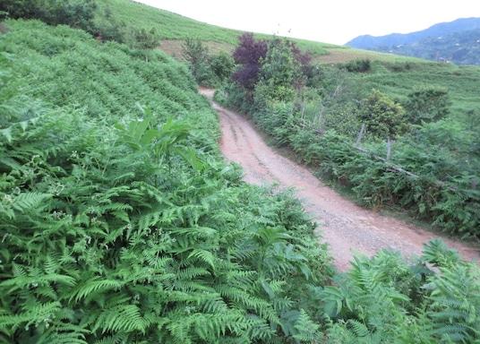 Kobuleti, Géorgie