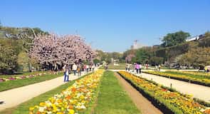 Jardin des Plantes (巴黎植物園)