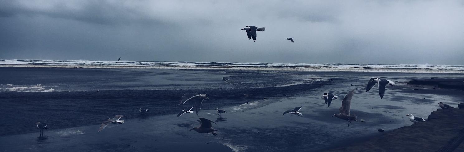 Ocean Park, Washington, United States of America