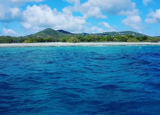 Estate Enighed, Americké Panenské ostrovy