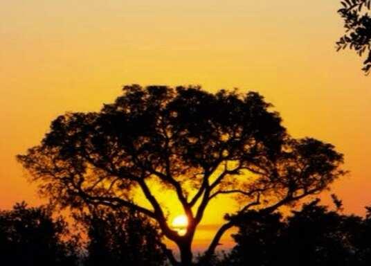 Kruger National Park, Sudáfrica