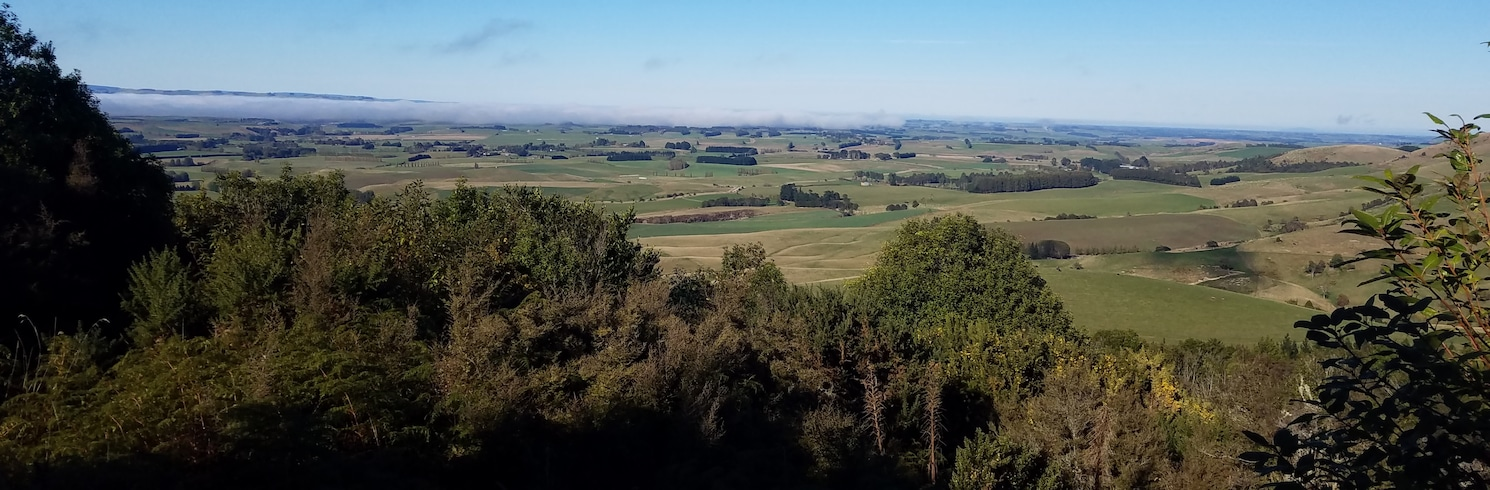 Croydon Bush, Novi Zeland