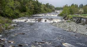 Sheet Harbour