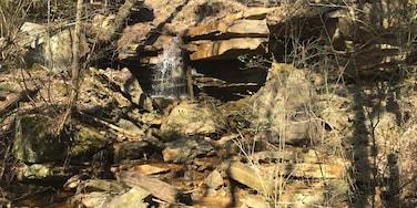 Vestavia Hills, Alabama, United States of America