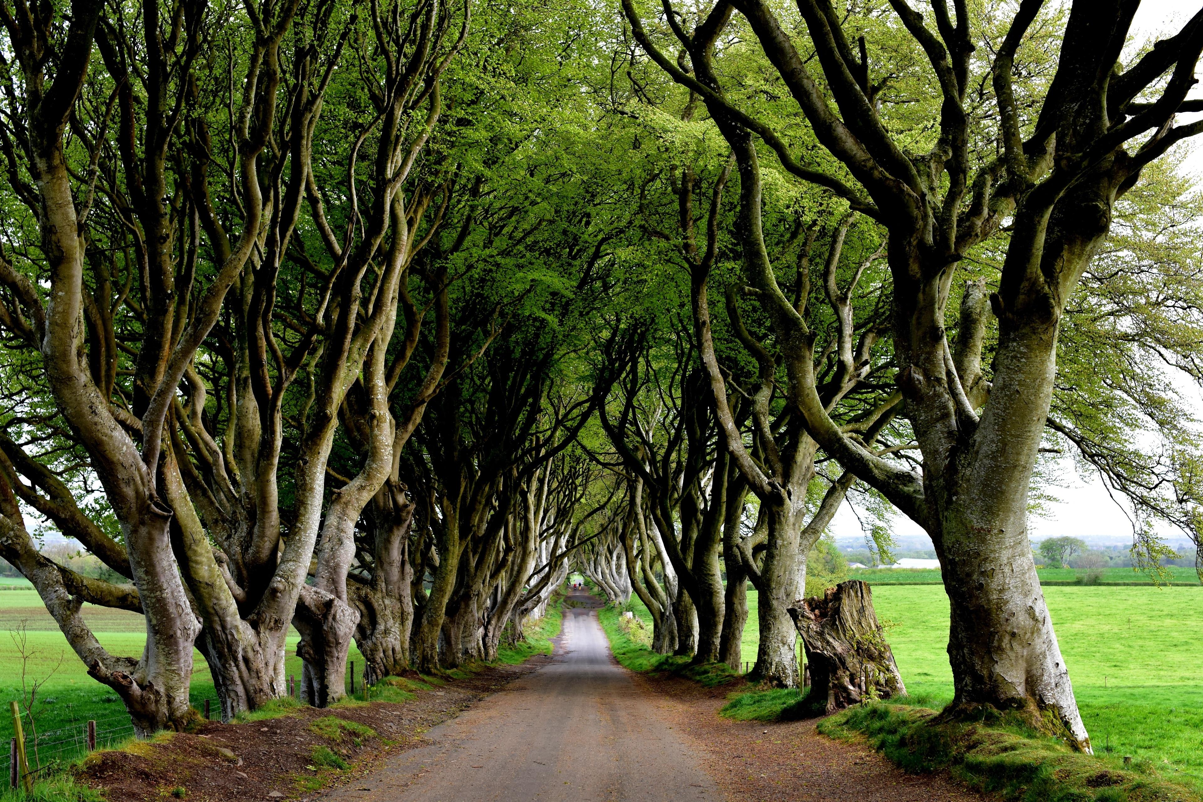 Ballymoney, Northern Ireland, United Kingdom