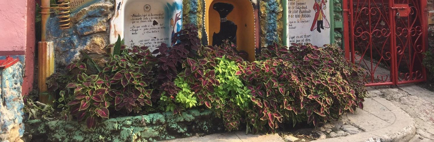 Callejón de Hamel, Kuba