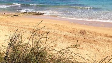 瓦奧海灘/