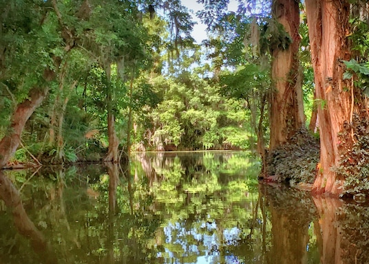Eustis, Florida, Birleşik Devletler