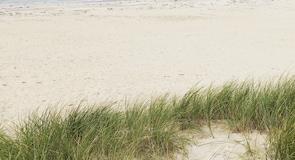 Pláž Luskentyre