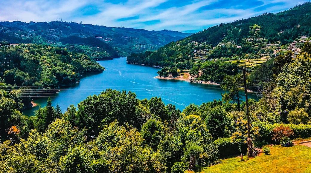 Photo de  Cátia Dombaxi