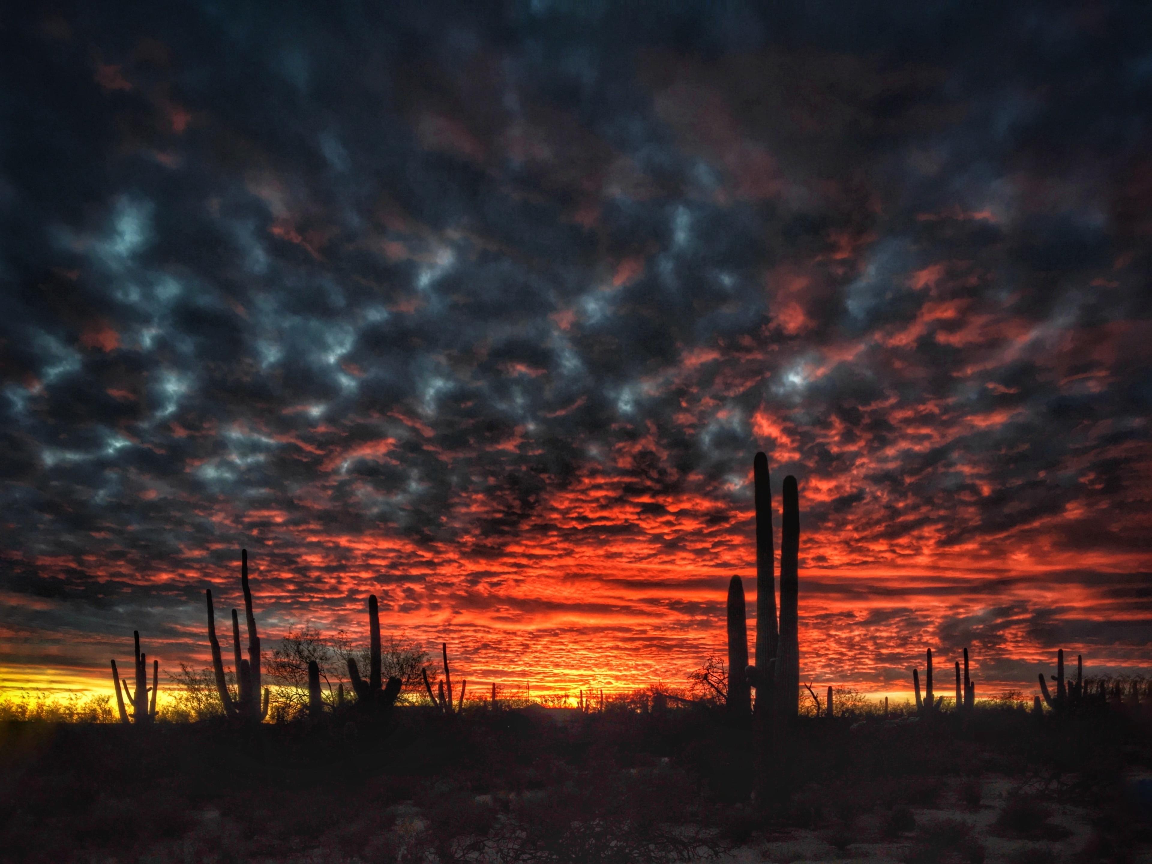 Catalina Foothills, Arizona, United States of America