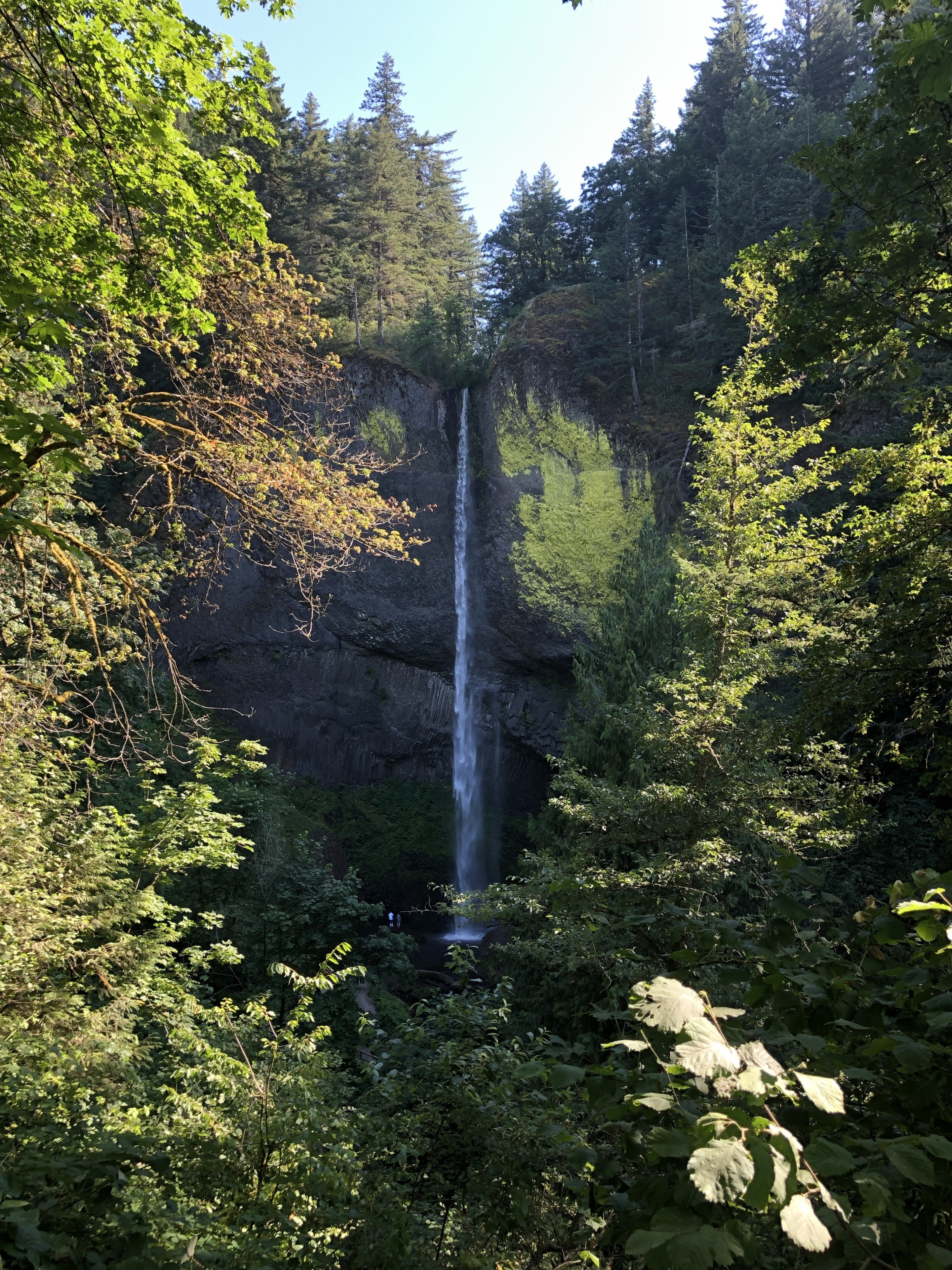 Guy Talbot State Park, Corbett, Oregon, United States of America