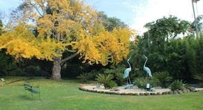 Botanischer Garten von Geelong