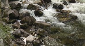 Park Cottonwood Falls