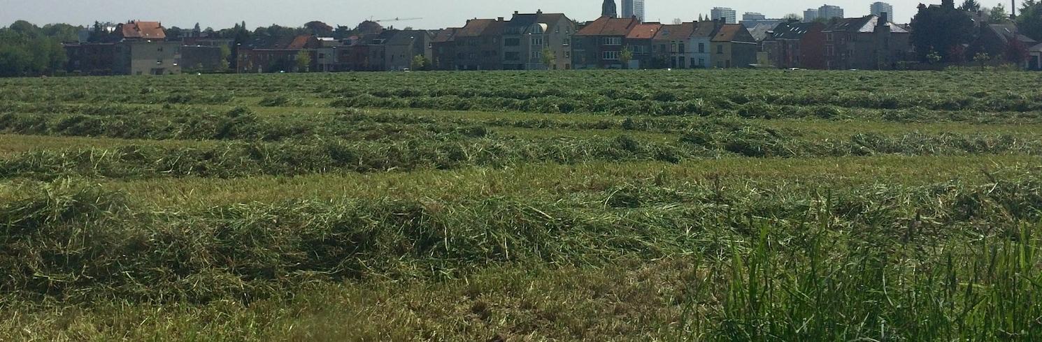 Grimbergen, Belgien