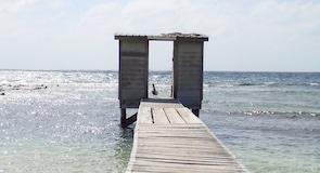 嘉莉鮑岩礁考察站