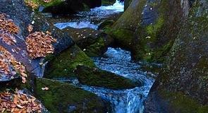 로스트 리버 협곡과 바위 동굴