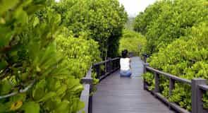 Návštevnícke centrum lesoparku Pran Buri